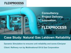 Flex Process Case Study_Dynamic Nat Gas Let Down