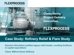 Flex Process Case Study_Dynamic Relief & Flare Study
